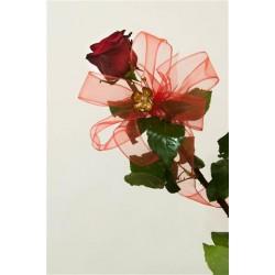 Róża miłości